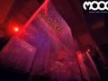 moog-25-12-2013-23-jpg
